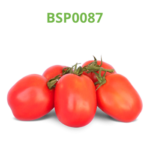 tomate-industrial-processo-bsp0087
