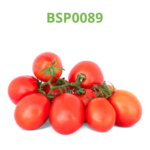 tomate-industrial-processo-bsp0089